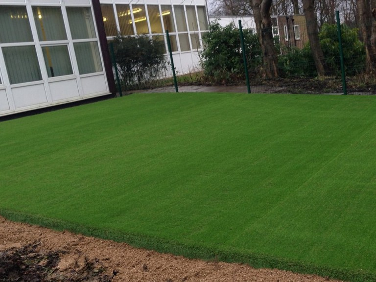 fake grass for dogs in a large garden
