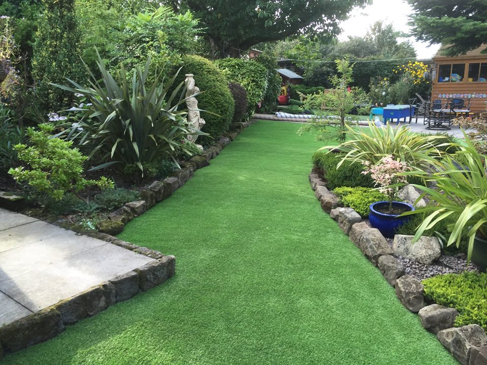 lawn turf in a garden Nottingham