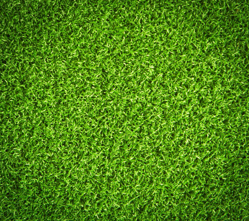 fake grass close up
